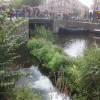 Fotowedstrijd Watertuinen