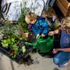 Straat opfleuren met plantjes