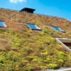 Samen onder een groen dak
