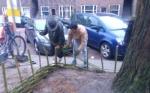 buurtboomtuinen Hunzestraat