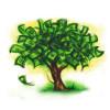 Vraag nu subsidie aan voor groene daken of gevels