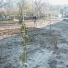 Buurttuin Egelenburg wordt aangeplant