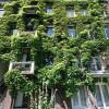 Waar zijn de fraaie groene gevels van Amsterdam?